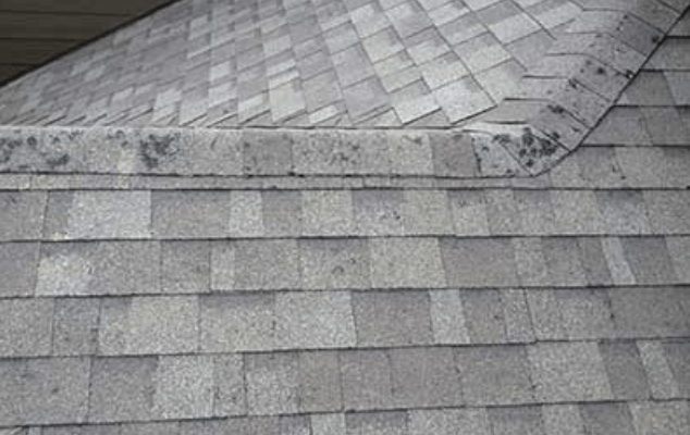 The 3 Major Signs Of Shingle Damage Absolute Construction